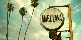 Marihuana para Convivir